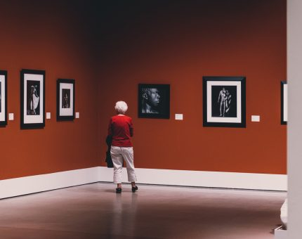 Museum Training